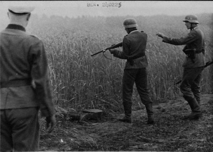Немецкие крошки раздеваются фото 167-452