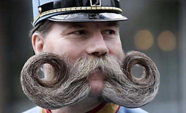 Бородатый лобок