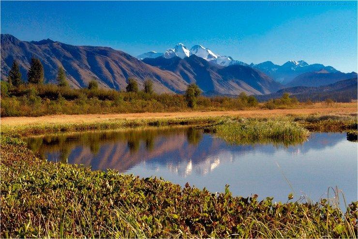 Фото отсюда.  Природа Казахстана.  Озеро Язевое.  Вид на Белуху.