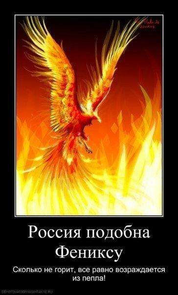 Статусы про феникса
