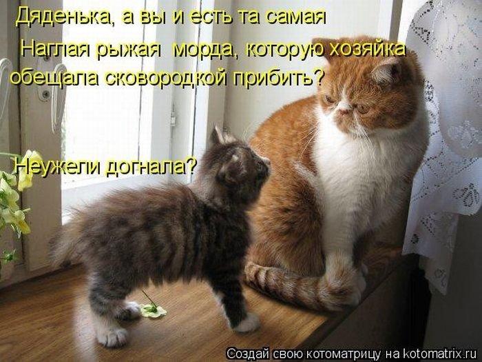 http://maxpark.com/static/u/article_image/13/01/13/tmpcvvozn.jpeg