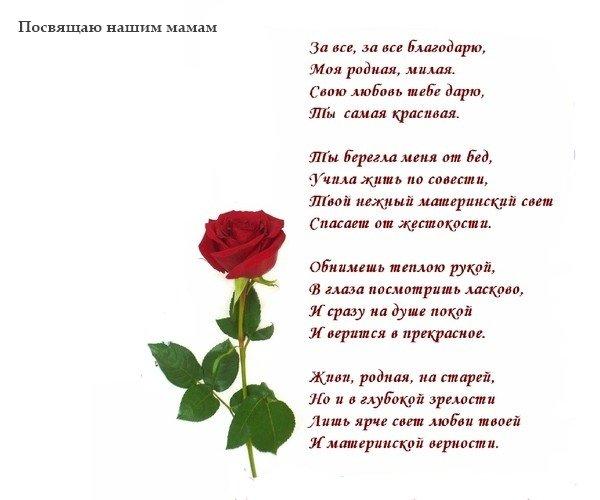 Стихи самой красивой женщине в мире до слез