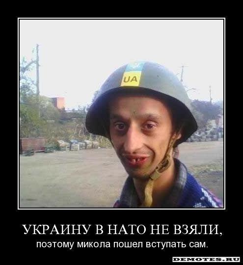 """На въезде в столицу батальон """"Киев-1"""" задержал фуру с 20 тоннами неизвестного химического вещества - Цензор.НЕТ 3644"""
