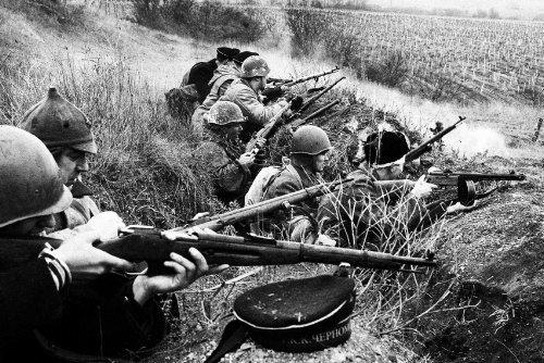 Белые пятна севастопольской трагедии лета 1942 года