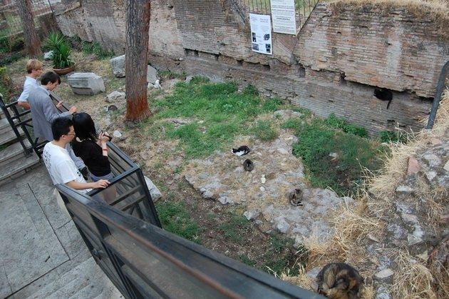Самые загадочные и интересные места Рима.   Волшебная сила ... Сант Иво Алла Сапиенца