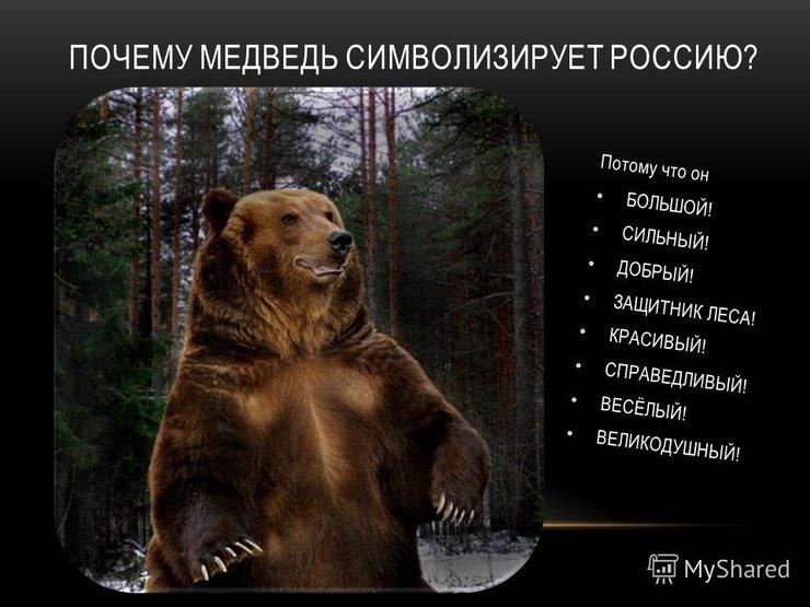 вспыхивают очаги статус картинка медведь участию принимаются