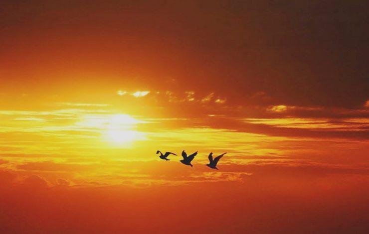 زیبایی های بینظیر طلوع و غروب خورشید