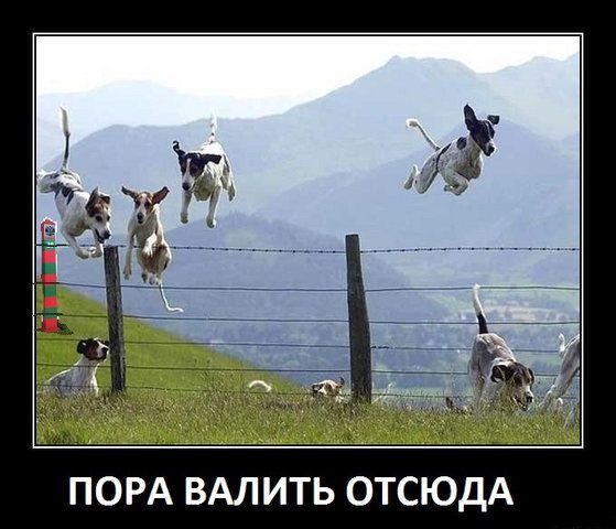 Россия финансирует политические партии в разных странах Евросоюза, - Климпуш-Цинцадзе - Цензор.НЕТ 6942